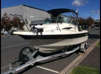 Buccaneer 565 Billfisher with Suzuki 140 Four Stroke